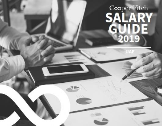 UAE Salary Guide 2019 - Public Sector